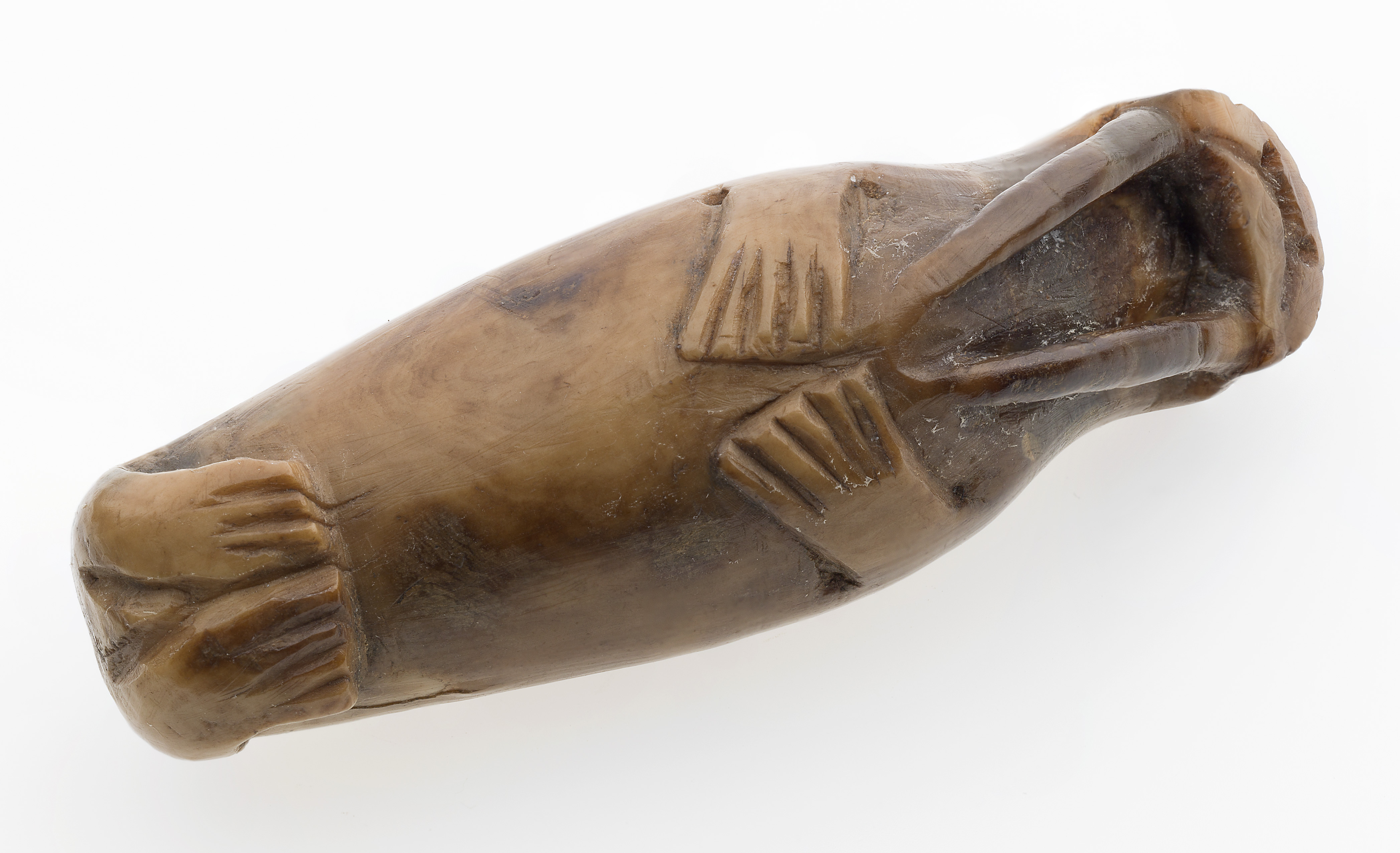 A tiny walrus carving from medieval Trondheim